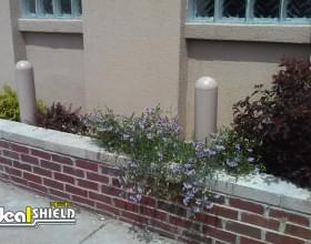 "Ideal Shield's plastic 1/4"" Bollard Covers used as wall protection"