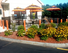 "Ideal Shield's 1/8"" orange bollard covers at a Dunkin Donuts drive-thru"