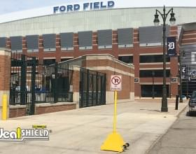 Ford-Field-Comerica-Park