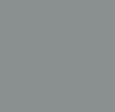 Silver (Pantone 877C)